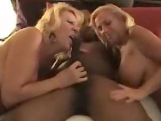 dee dicarlo and mandi mcgraw interracial sex scene