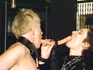 mature lesbian honeys toying each other