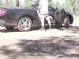 public screwed in the car